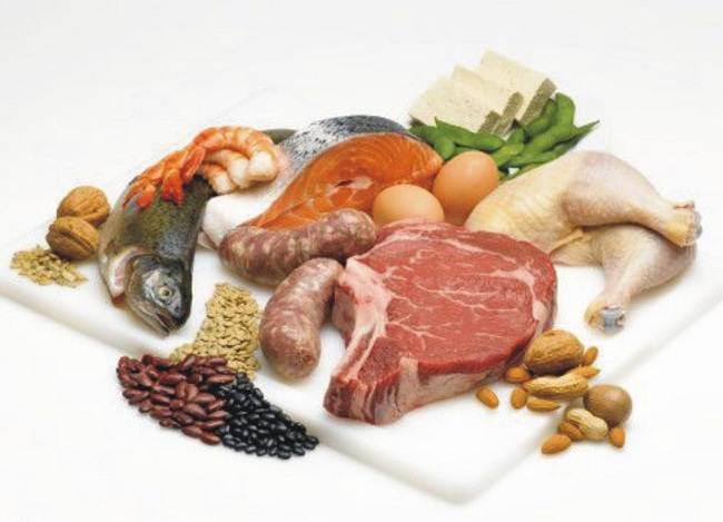 makanan yang mengandung protein